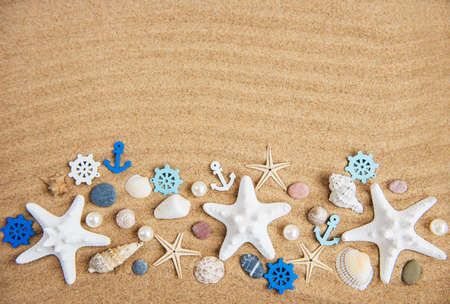 sea shells with sand as natural holiday background