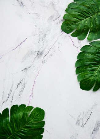 Photo pour Monstera leaves on a marble background flat lay - image libre de droit
