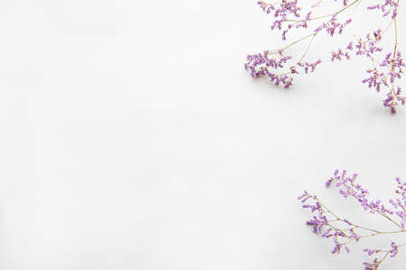 Photo for Flowers composition. Frame made of dried flowers on white background. Flat lay, top view - Royalty Free Image