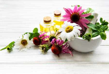 Photo for Medical flowers and plant in mortar and essential oils on a white wooden table - Royalty Free Image