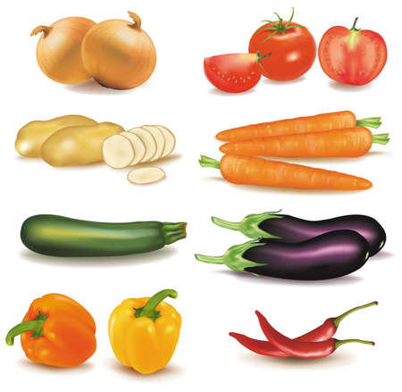 The big colorful group of vegetables. Photo-realistic vector. のイラスト素材