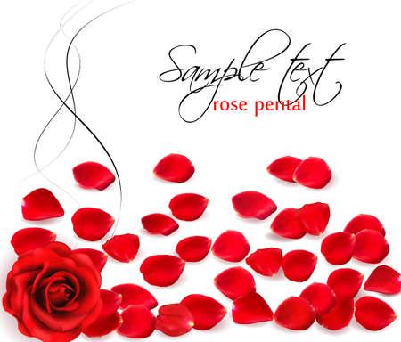 Background of red rose petals.  Vector illustration.