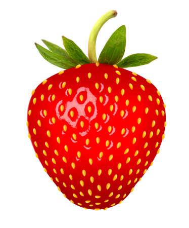 Illustration pour Strawberry. Vector. - image libre de droit