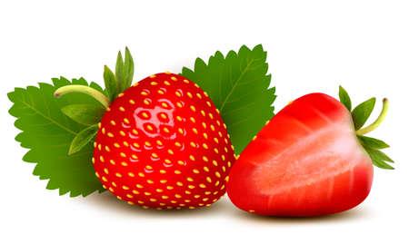 Illustration pour Two strawberries with leaves . Vector.  - image libre de droit