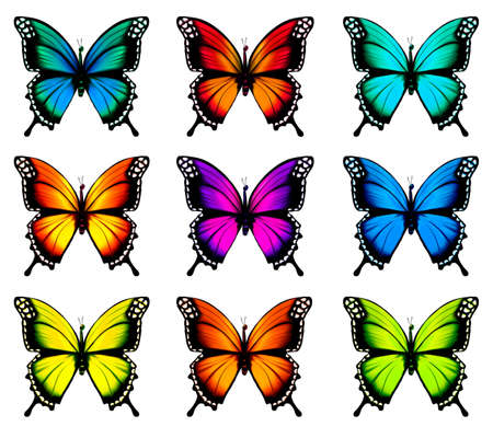 Illustration pour Collection of colorful butterflies, flying in different directions. - image libre de droit