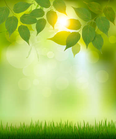 Ilustración de Summer nature background with green leaves. Vector. - Imagen libre de derechos