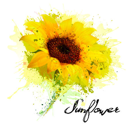 Illustration for Abstract background with yellow sunflower. Vector - Royalty Free Image