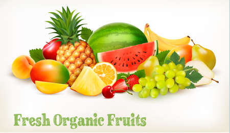 Big collection of different fresh fruit. Vector.