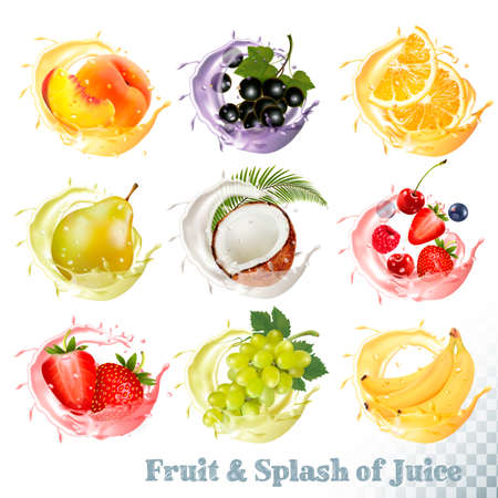 Illustration pour Set of fruit juice splash . Peach, orange, pear, grapes, banana, coconut, blueberry, strawberry, raspberry and blackberry. Vector - image libre de droit