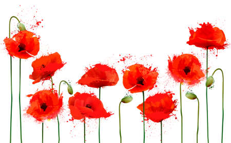 Beautiful abstract  background with red poppies flowers. Vector.