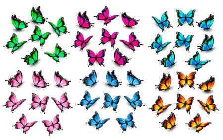 Vektor für Colorful butterflies set. Vector. - Lizenzfreies Bild