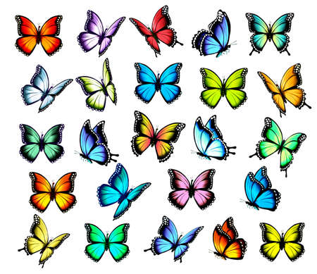 Illustration for Big group of colorful butterflies, flying in different directions. Vector. - Royalty Free Image