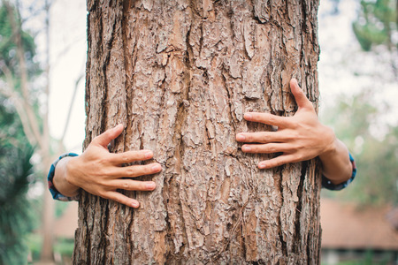 Photo for Man hug big tree color of hipster tone selective soft focus, concept nature and people protect environment - Royalty Free Image