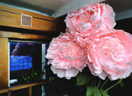 Large flowers scenery on March 8, International Women's Day. Unreal flowers, models, peonies
