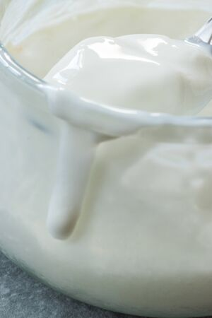 Homemade Goat Yogurt in Glass Bowl with Spoon / Probiotic Custard. Organic Product.