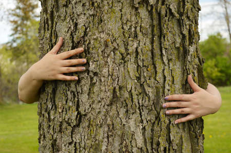 Photo for A conceptual image of several peoples arms hugging a large tree for several environmentalists ideas to illustrate. - Royalty Free Image