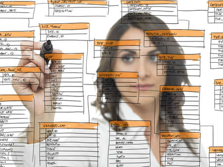 Businesswoman works on the database software development