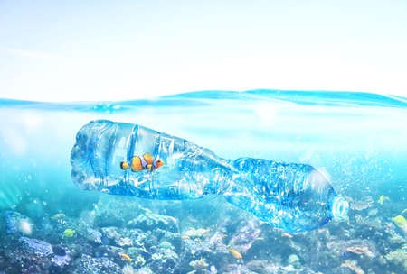 Photo for Fish trapped inside a bottle. Problem of plastic pollution under the sea concept. - Royalty Free Image