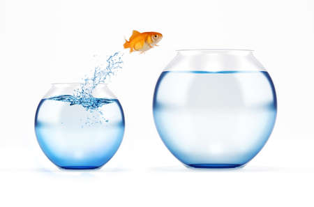 Photo pour Red fish jumps from a cruet to a bigger one. concept of escape from crowd - image libre de droit