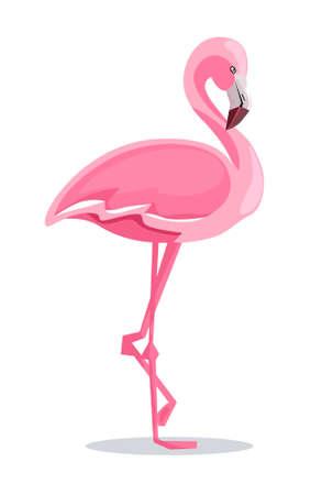 Illustration pour Flamingo Vector Illustration - image libre de droit