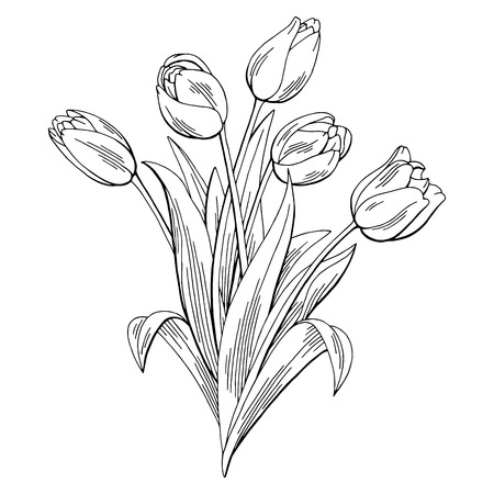 Illustration pour Tulip flower graphic black and white isolated bouquet sketch illustration vector - image libre de droit