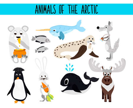 Set of Cute cartoon Animals and birds of the Arctic on a white background. Polar bear, Arctic wolf, hare, walrus, penguin, narwhal, reindeer, sea fish. Vector illustration