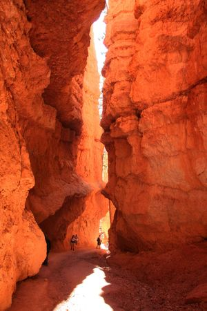 A narrow canyon in Bryce Canyon, National Park Utah.