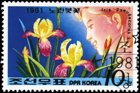 NORTH KOREA - CIRCA 1981: A Stamp printed in NORTH KOREA shows image of a Iris Pseudacorus, from the series Designs, circa 1981