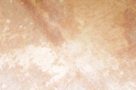 Photo pour Drum texture brown patterns abstract background - image libre de droit