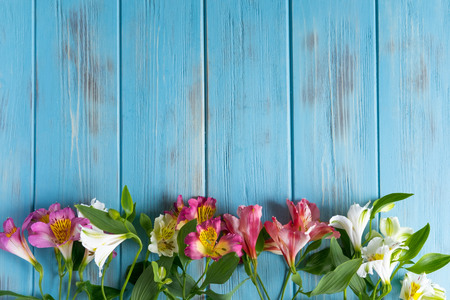 Photo for Template birthday greeting card. Blue wooden background with pink flowers of alstroemeria. The basis for the congratulatory banner. - Royalty Free Image