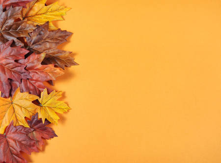 Autumn Leaves On Modern Trend Orange Background For Fall