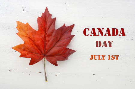 Happy Canada Day red silk maple leaf  on white wood shabby chic table with Canada Day, July 1st, text greeting.