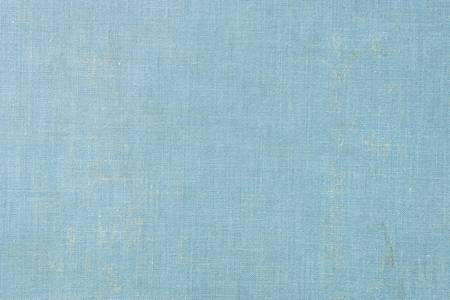 Blue Cloth Book Cover