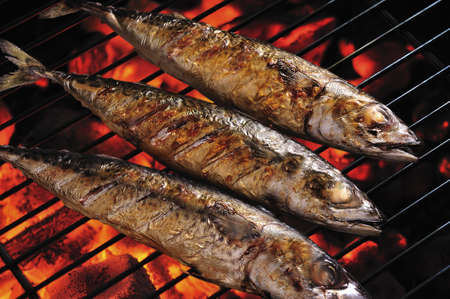 Grilled fish on the grill , saba