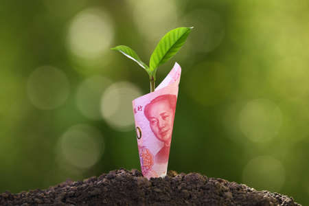 Photo pour Image of China Yuan banknote with plant growing on top for business, saving, growth, economic concept - image libre de droit