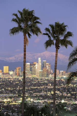 This is the Los Angeles skyline with two palm trees in the winter. Snowy Mount Baldy is in the background. It is the view from Baldwin Hills at dusk.
