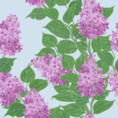 Seamless vector floral pattern with flowering lilac