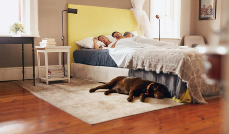 Photo pour Indoor shot of dog lying on floor in bedroom. Young couple sleeping comfortably on bed. - image libre de droit