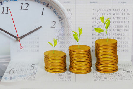 Photo pour Tree growing on coins stack ,concept of investment growth. - image libre de droit