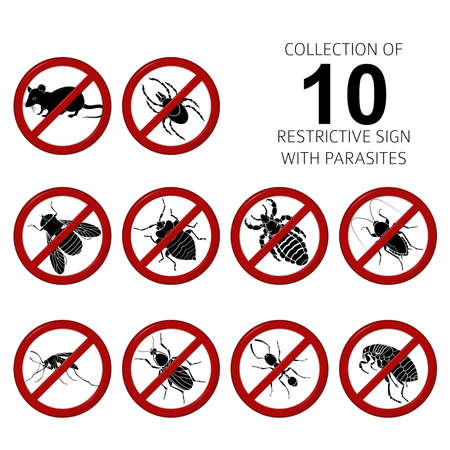 Vector Collection of image of 10 parasites
