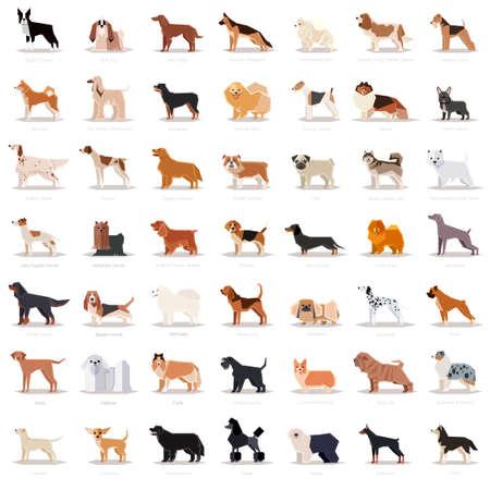 Big set of flat dog icons.