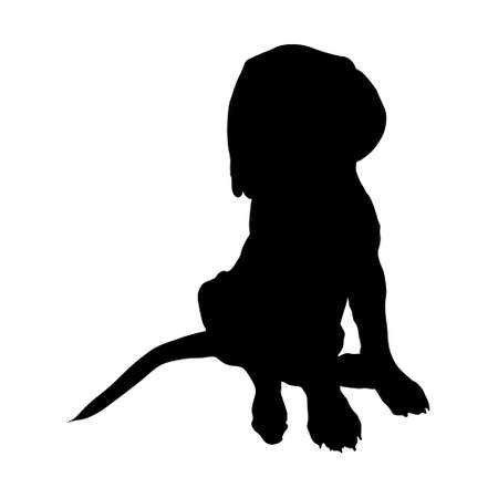 Illustration for Dogue De Bordeaux Silhouette Vector Found In Map Of Europe - Royalty Free Image