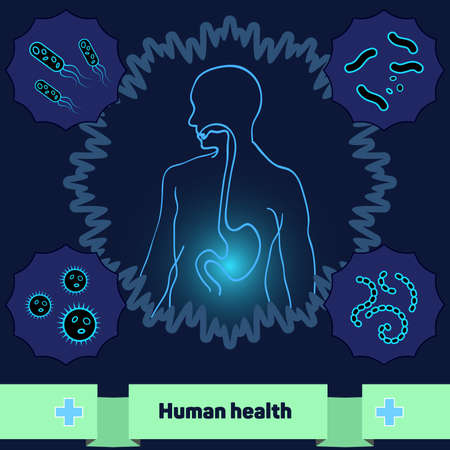 Illustration pour The human body without dangerous bacteria and microorganisms - image libre de droit