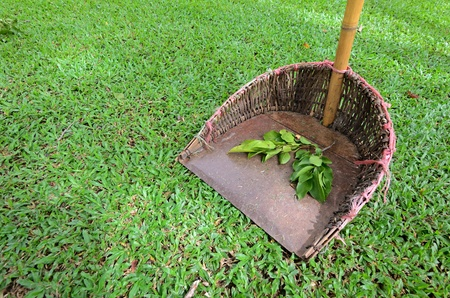 a old Dustpan in garden with leaf