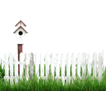 birdhouse with green grass isolated