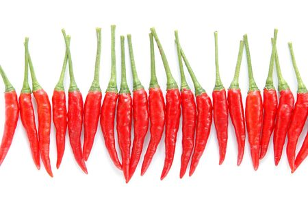 red chili isilated