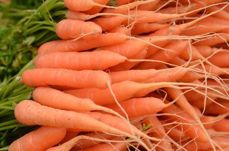 fresh carot on a market