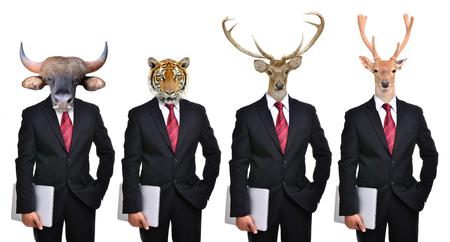 Foto de animals dressed up as formal business man, deer tiger bear  bison  gaur - Imagen libre de derechos