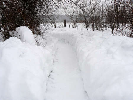 Road in the middle of snowdrifts