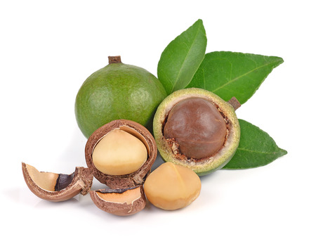 Photo pour macadamia nuts isolated on white background - image libre de droit